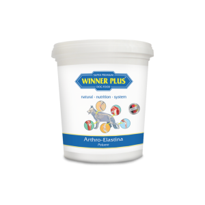 arthro-elastina-powder