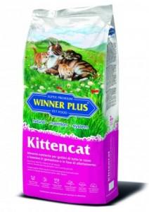 kittencat-2kg